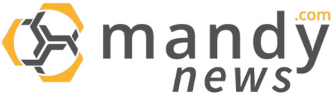 The Mandy Network Logo